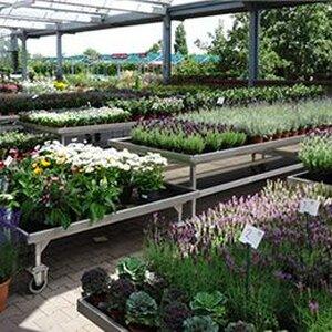 Global Garden B.V. image 3